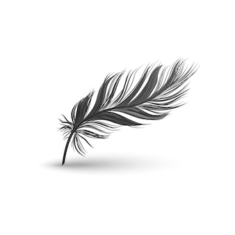 Black falling fluffy feather illustration on white