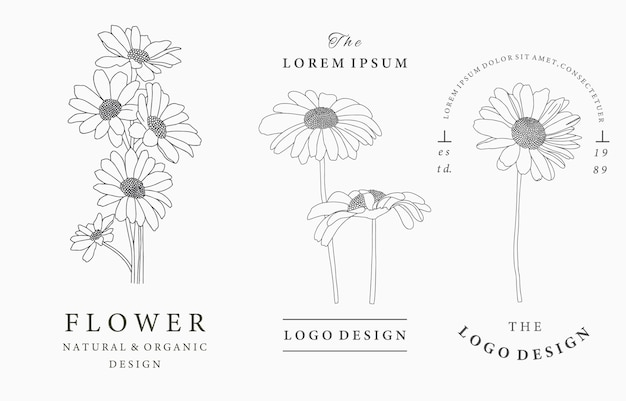 Black flower logo collection with daisies,leaves,geometric