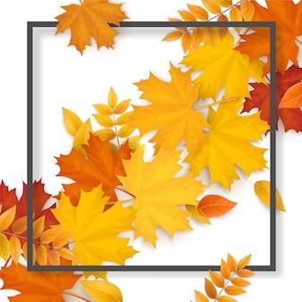 白い背景の上の秋の落ち葉と黒のフレーム。