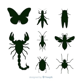 Black insect silhouettes collection