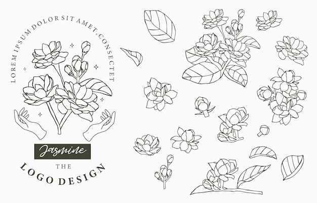 Black jasmine logo collection with leaves.
