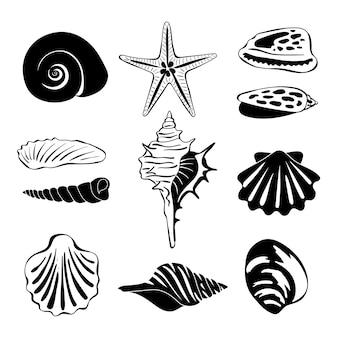 Black monochrome illustration of marine shells.  silhouette isolate. seashell exotic souvenir, spiral maritime shells