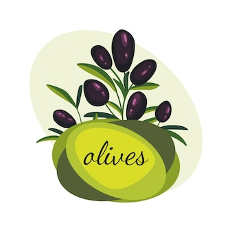 Black olive branches