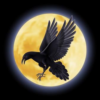 Black raven