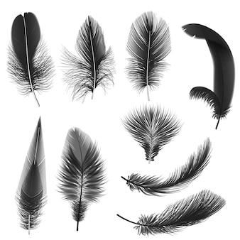 Черные реалистичные перья, изолированные на белом фоне