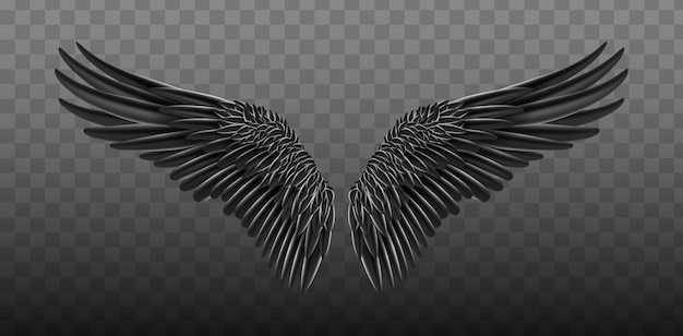 Black realistic wings.  illustration bird wings design.