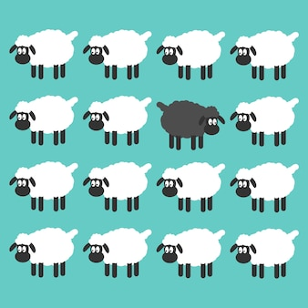 Black sheep between white sheep vector illustration.