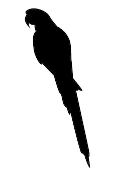 Black silhouette adult parrot of red-and-green macaw ara sitting (ara chloropterus) cartoon bird design flat vector illustration isolated on white background.