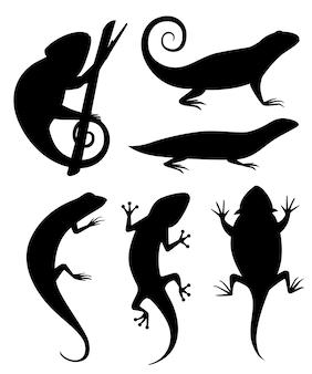 검은 실루엣. 만화 카멜레온 분기에 올라. 작은 도마뱀. 동물 아이콘 모음. 흰색 배경에 그림