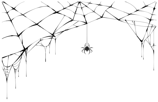 Black spider and torn web. scary spiderweb of halloween symbol.