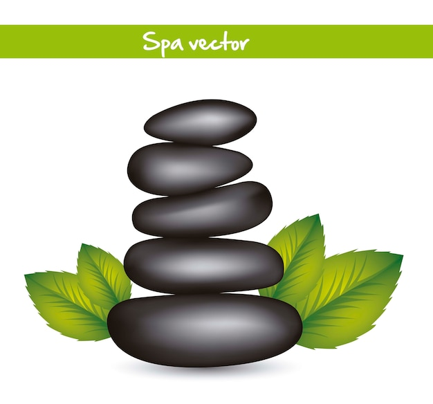 Black stones spa with leaves vector illustration