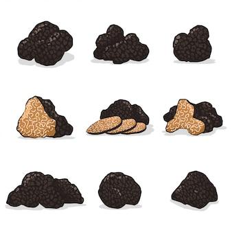 Набор векторных мультфильм гриб черный трюфель изолированы.