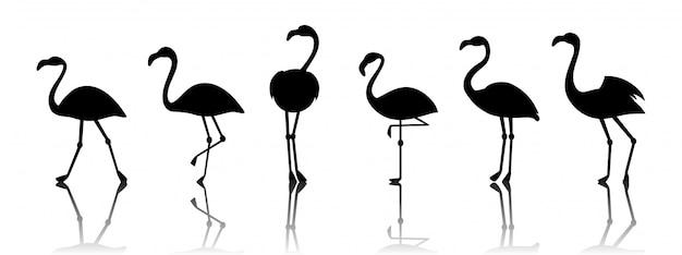 Черные векторные силуэты фламинго на белом