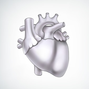 Black and white 3d heart