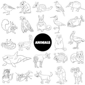 Black and white cartoon wild animal characters big set