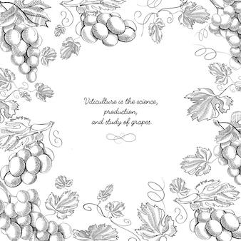 Composizione in doodle cornice creativa in bianco e nero con rametti e steli di illustrazione disegnata a mano di uva deliziosa