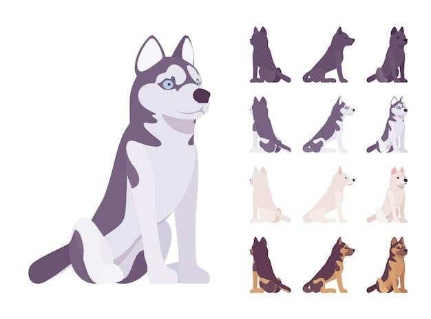 黒、白犬、ハスキー、羊飼いの座っているセット。ペット、家族の同伴者、家の警備、農場または警察のセキュリティの品種。分離、白い背景、さまざまなビューをベクトルフラットスタイル漫画イラスト