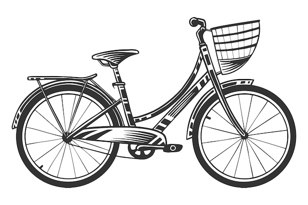 Black and white  drawing of city bicycle, isolated on white background.