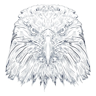 Black and white engrave isolated eagle