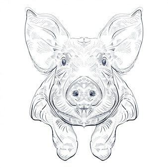 Black and white engrave isolated pig with legs