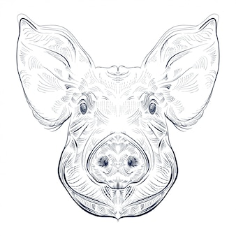 Black and white engrave isolated pig