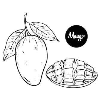 Black and white fresh mango hand drawing