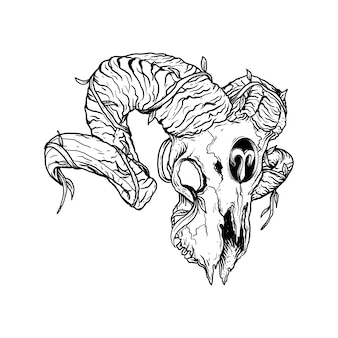 Black and white hand drawn illustration aries skull zodiac