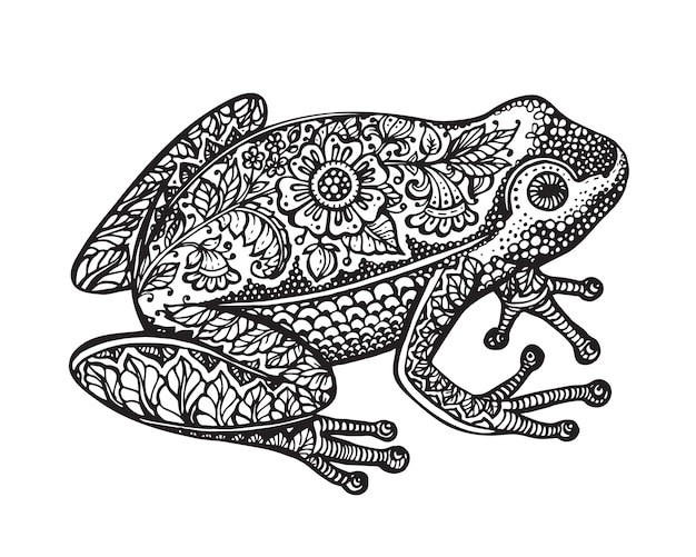Black and white hand drawn ornate doodle frog in graphic style isolated on white background