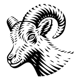 A black and white illustration of a goat in engraving style on white background