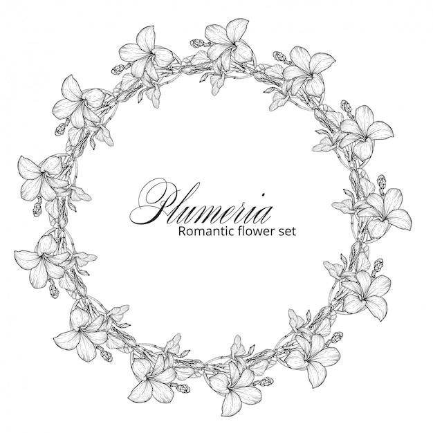 Black and white plumeria flowers. flower wreath.