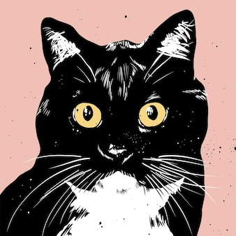 Black and white pop art cat