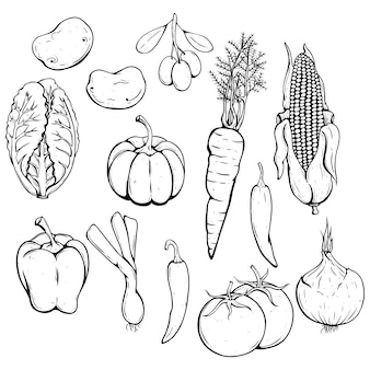 Black and white vegetables set