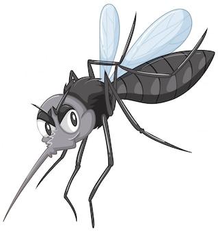 Black wild mosquito