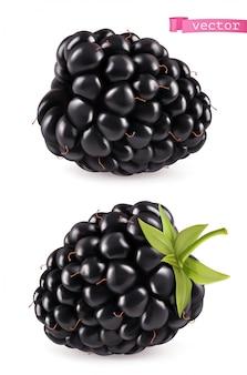 Blackberry, реалистичный 3d