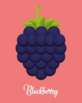 Значок ежевики фрукты на фоне розовый