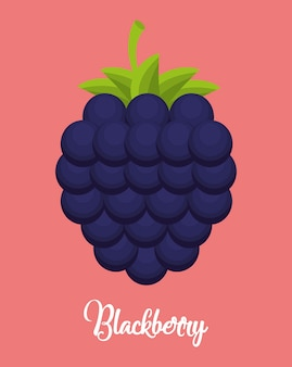 Blackberry fruit icon over pink background