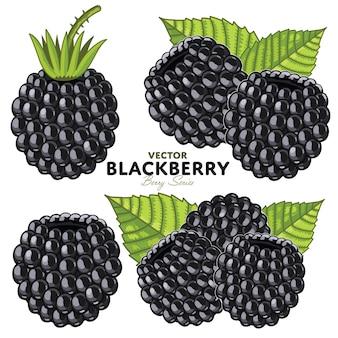 Blackberry set
