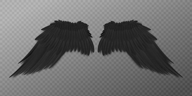 다시보기에서 현실적인 깃털을 가진 블랙 버드 또는 다크 엔젤 날개