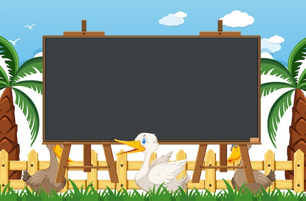 Blackboard template with ducks in the park