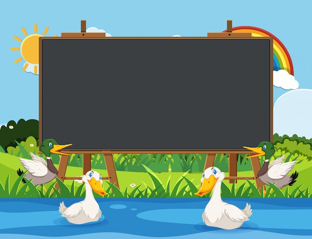 Blackboard template with ducks swimming in the river