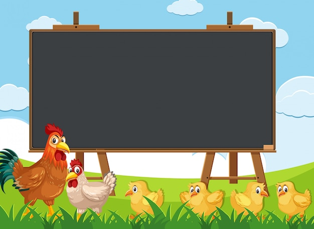 Blackboard template with many chickens walking in the field