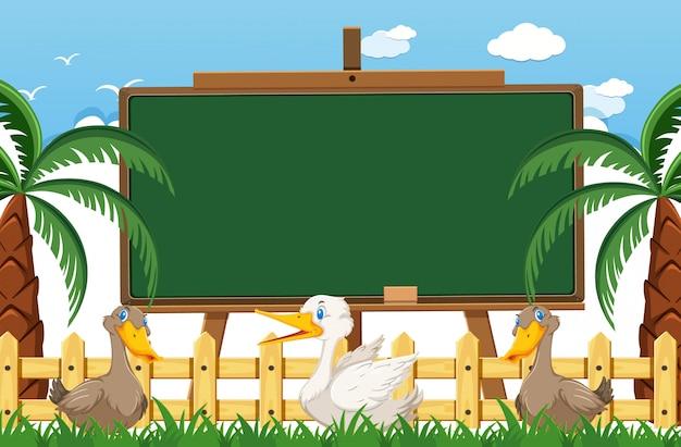 Blackboard template with many ducks on the farm