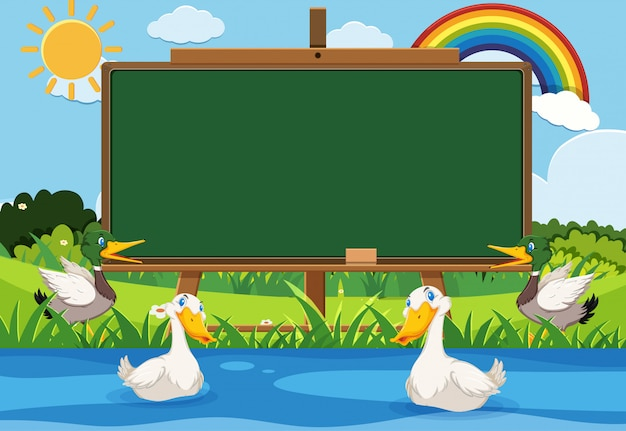 Blackboard template with many ducks swimming in the pond