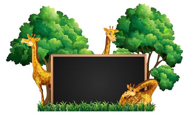 公園に野生のキリンと黒板