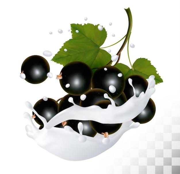 Blackcurrants in a milk splash on a transparent background