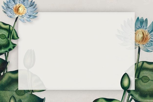 空白の青い睡蓮フレームベクトル