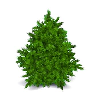 Blank christmas tree