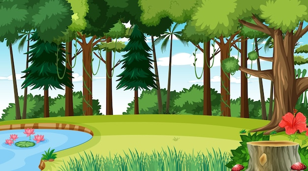 Blank forest at daytime scene with various forest trees