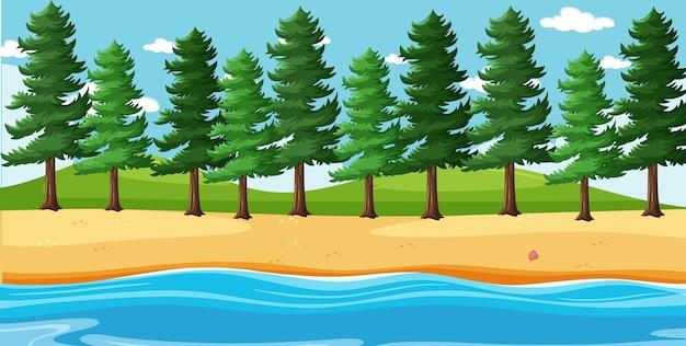 Paesaggio vuoto nella scena della spiaggia della natura con molti pini