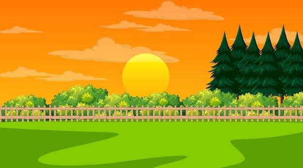 Пустая пейзажная сцена природного парка во время заката